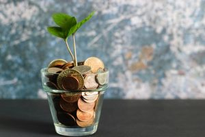 A green plant in a clear glass filled with coins